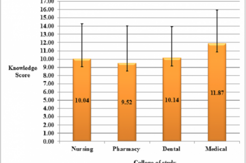 Figure 1: Mean (+/-SD) Knowledge Score of the Study Respondents.