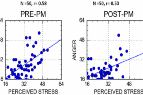 Figure 1: Comparison of Pre- and Post-Intervention PST- ANG Relationships