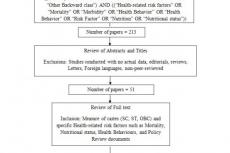 Literature Search Schematic