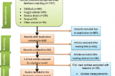 PRISMA flow diagram for study selection for systematic review and meta-analysis of prevalence onchocerciasis in sub-Saharan Africa, 2021 (n=17)
